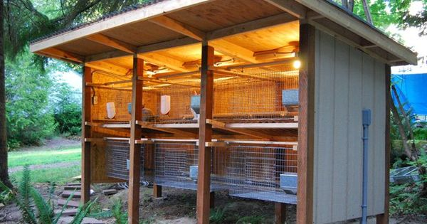 Cool rabbit hutch i m planning a 15 long 5 across for Awesome rabbit hutches