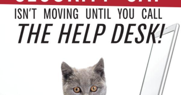 Security Cat Meme The Security Awareness Company