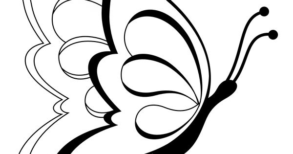 Butterfly clipart butterfly 19 black white line art for A line salon corte madera