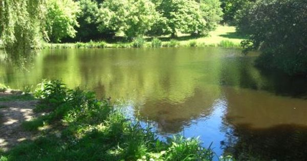 How to build an artificial fishing lake lakes for Artificial fish pond
