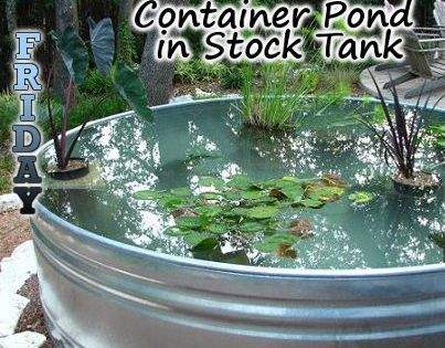 pinner said:How to build a container pond. Awesome DIY. this is on