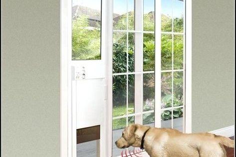 Best Electronic Dog Door Reviews Smart Dog Door Sliding Doors