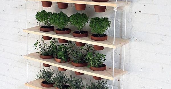 plante herbe aromatique idee decoration diy do it yourself cuisine balcon mur vegetal pinteres. Black Bedroom Furniture Sets. Home Design Ideas