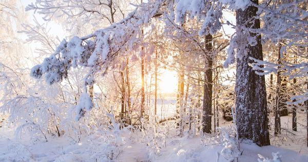 portland snow very cold temperature