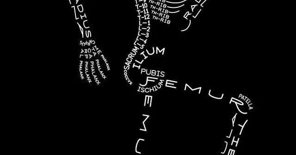 Word skeleton | nurse sayings/nursing school | Pinterest ...