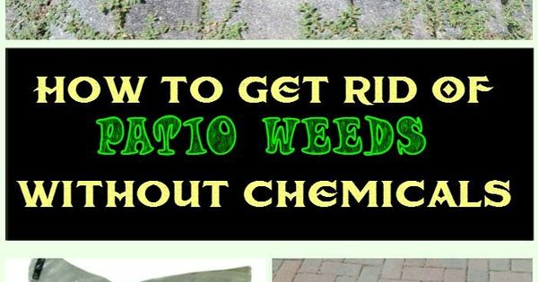 How to get rid of patio weeds without chemicals townhouse for How to get rid of weeds in garden