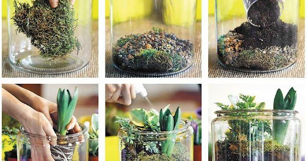 Indoor Garden Stuff - diy plant terrarium by nicole cammorata of scarlet
