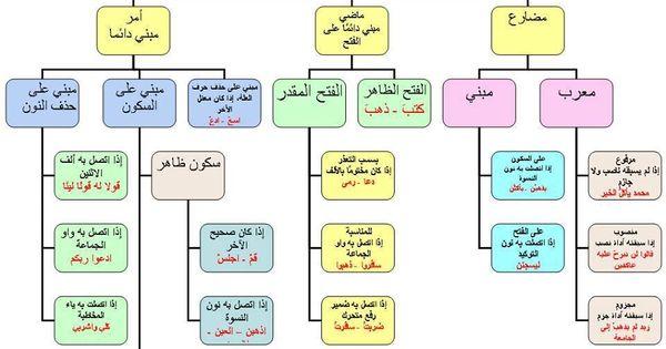هام جدا بعض قواعد اللغة العربية Arabic Language Learning Arabic Learn Arabic Language