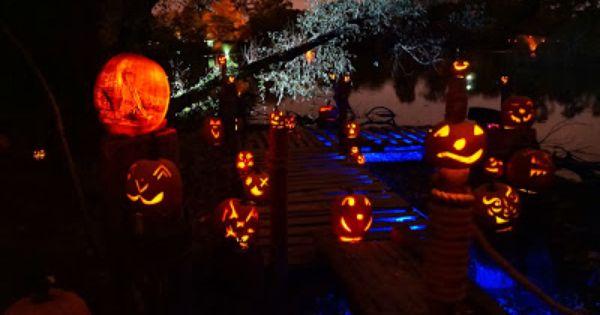 10 20 13 Roger Williams Park Zoo Jack O Lantern Spectacular Pumpkinville Jack O Lantern Spectacular Jack O Lantern Pumpkin Carving