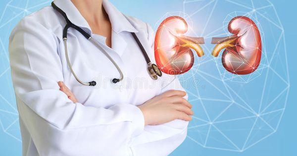 Urologist Doctor And Kidney Urologist Doctor And Kidney On A Blue Background Ad Doctor Urologist Kidn Medical Background Urologists Blue Backgrounds