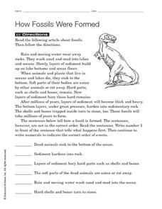 How Fossils Were Formed Worksheet | Fossils, Dinosaur ...