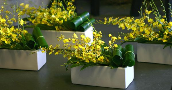 Simple arrangement of oncidium orchids and tropical