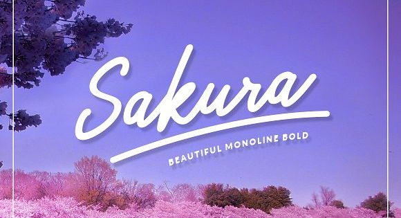Sakura Bold Font Set – With exaggerated strokes and an extra bouncy baseline
