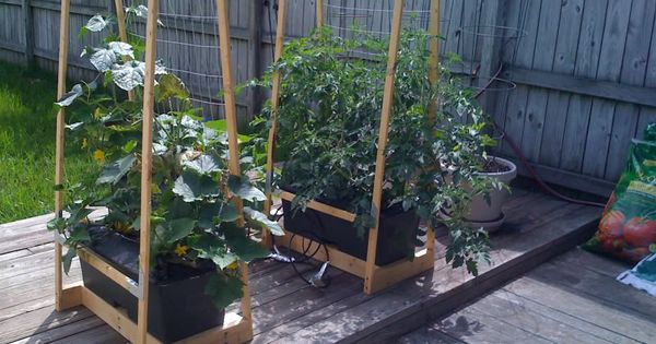 Earthbox And Trellis Google Search Gardening 400 x 300