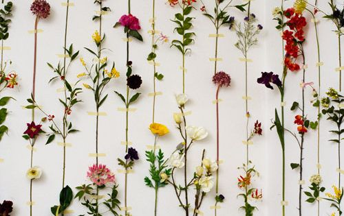Fun idea - dried flowers made into gorgeous wall decor