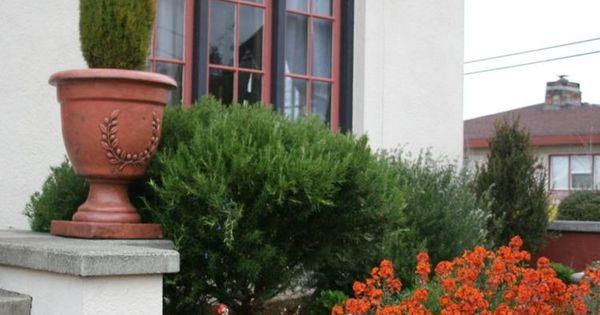 Am Nagement De Jardin M Diterran En Plantes Et Fleurs Voir Plus D 39 Id Es Sur Les Th Mes
