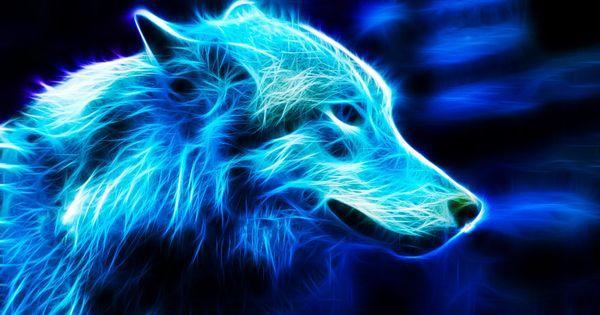 109 Best Animals Images On Pinterest: ♥BLU♥ 109 DeviantART BLUE