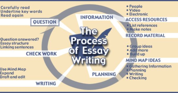 write law term paper