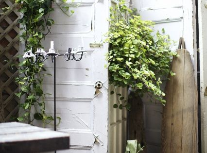 Use old doors for a privacy screen and vertical growing space on