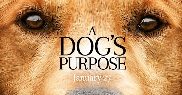 Dog S Purpose Online Subtitulada