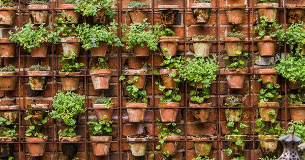 Si tienes una terraza esta es una estupenda idea para - Plantar hierbas aromaticas ...