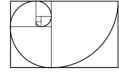 La Proporción áurea Explicada Con Ejemplos Proporcion Aurea Aurea Espiral De Fibonacci