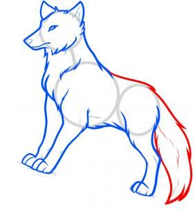 How To Draw Anime Wolves Anime Wolves Step By Step Anime Animals Anime Draw Japanese Anime Draw Manga Free Online Anime Drawings Anime Wolf Wolf Drawing