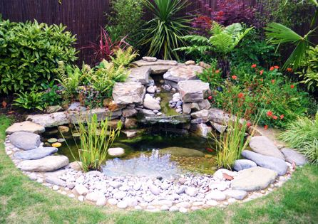 Natural small garden ponds 12natural pond is one of great for Garden pond ideas for small gardens
