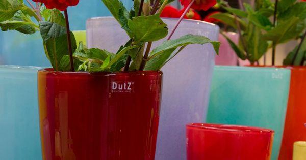 Mooie gekleurde vazen van dutz collection mondgeblazen for Dutz vazen verkooppunten