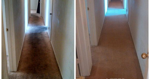 Before And After Carpet Cleaning Thanks To San Diego