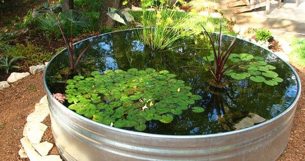 Easy, peasy DIY home pond.