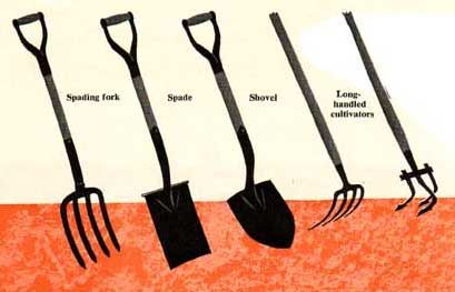 Gardening Hand Tools For Planting And Cultivating With Images