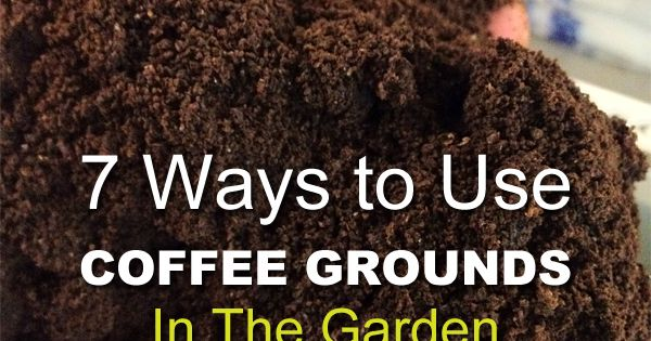 7 Ways To Use Coffee Grounds In The Garden V Xter