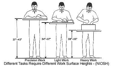 Person Using Different Work Surface Heights To Perform Varied Tasks Standing Work Station Used Cubicles Ergonomics