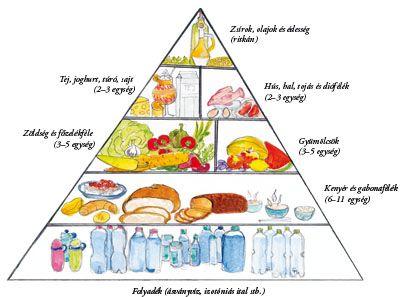 egészséges étrend piramis