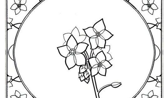 Forget Me Not Coloring In Pinterest Free Coloring