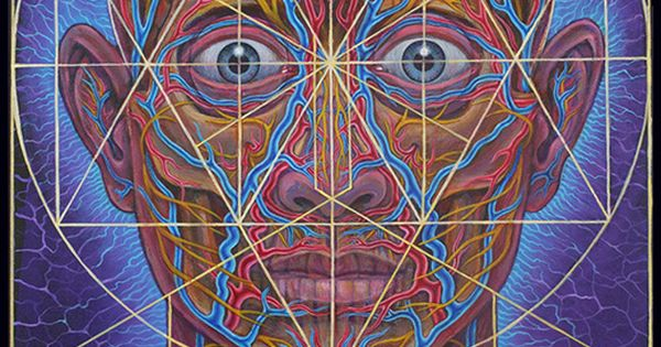 Human Geometry - Alex Grey … | Pinteres…