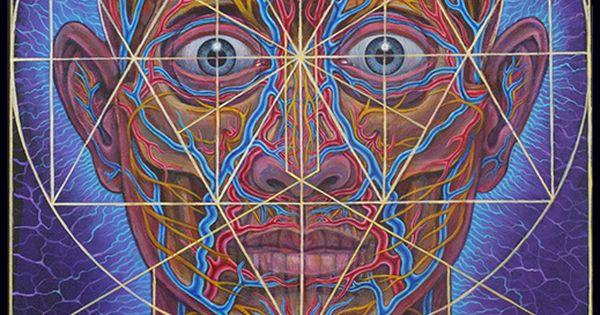 Human Geometry - Alex Grey … | Pinteres…