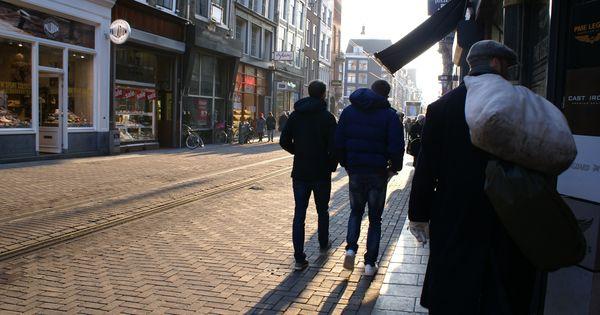 essay on loneliness in frankenstein