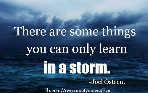 Joel Osteen Quote: There Are Some Things You Can Only Learn In