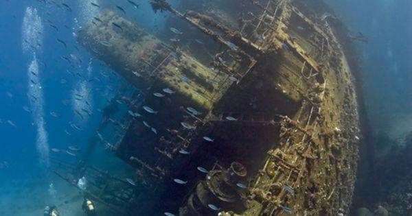 Naufragio, La foto del Mar Rojo