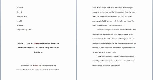 Animal Cruelty Essay Outline Unique 50 Persuasive Writing Help On Alcohol Abuse