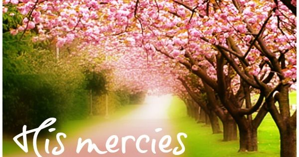 Lamentations 3:22-23 It is of the Lord's mercies that we are not