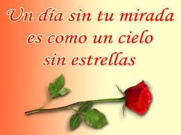 Rosas Hermosas Con Frases De Amor Novio Rosas Hermosas Con