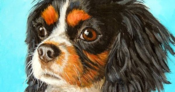 A New Cavalier King Charles Spaniel Painting King Charles Cavalier Spaniel Puppy Spaniel Art Cavalier King Charles Spaniel Tricolor