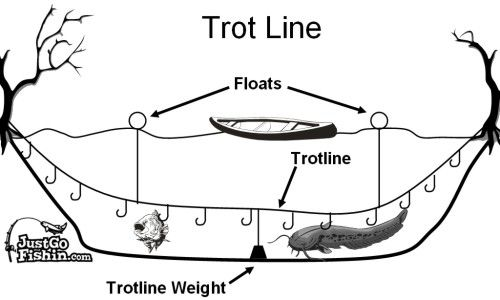 Several Ways To Make Trotlines I Make My Own Because They Last Longer Catfish Fishing Best Fishing Fishing Rigs
