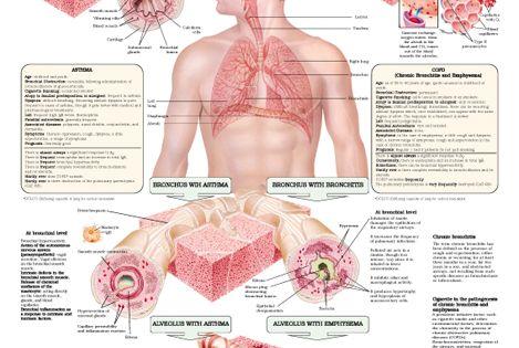 Respiratory Therapy b music australia