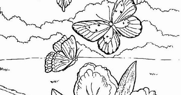 okeefe coloring pages - photo #30