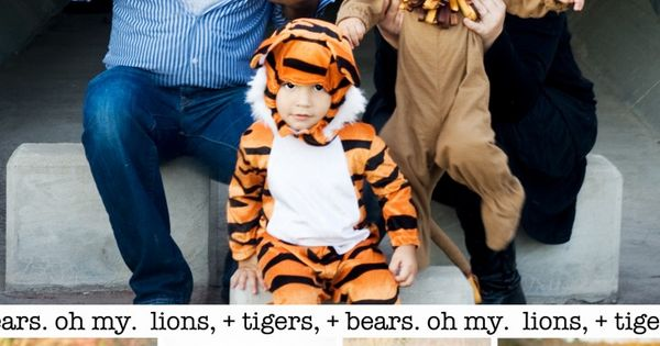 Family Halloween Costume Ideas - Lions and Tigers and Bears, Oh My!