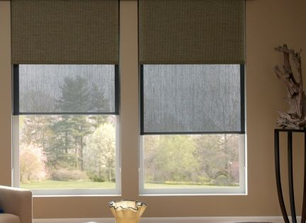 Dual Roller Shades Gives You The Option Of Using A Solar